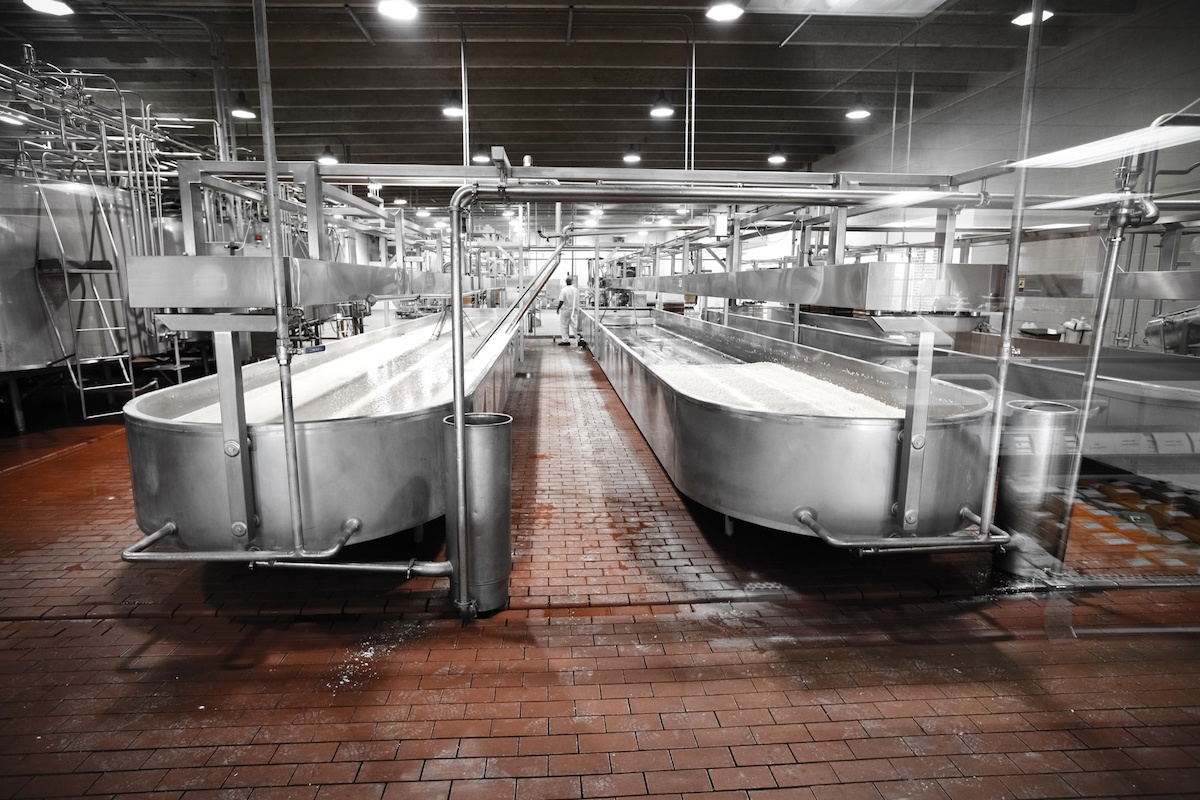 large-dairy-service